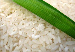 Nasi Putih Beraroma Pandan